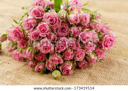 Set of Roses on sackcloth textured  - stock photo
