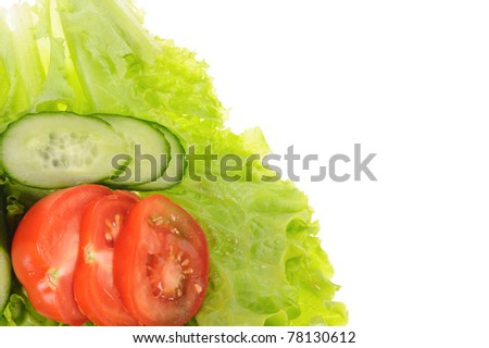 set of salad, tomato and dill  isolated on the white background