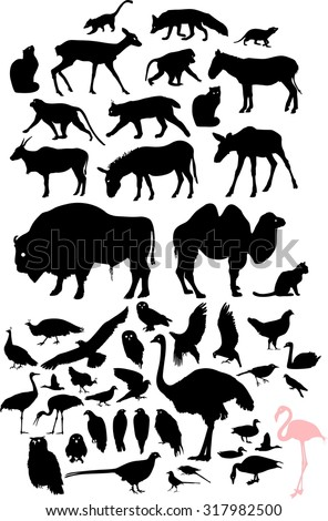 Set of silhouettes of birds and animals - stock photo