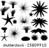 Set of silhouettes of sea lifeforms. Vector file available. - stock photo