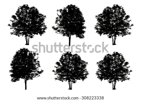 set of six trees silhouette isolated on white background with clipping path - stock photo