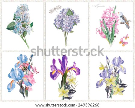 set of the six watercolor flower's isolated on a white.  - stock photo