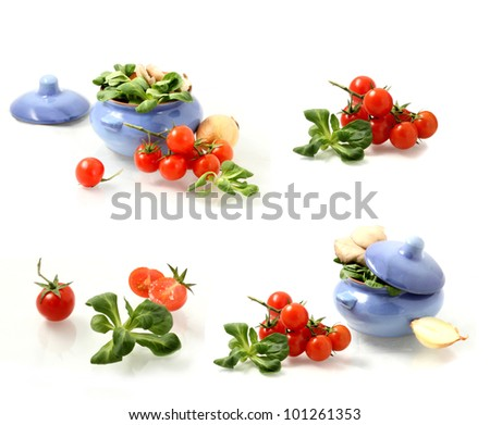 set of the tomatoes, herbs  and pot