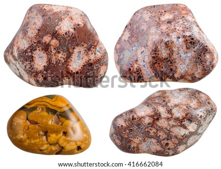 set of various leopard skin jasper natural mineral stones and gemstones isolated on white background