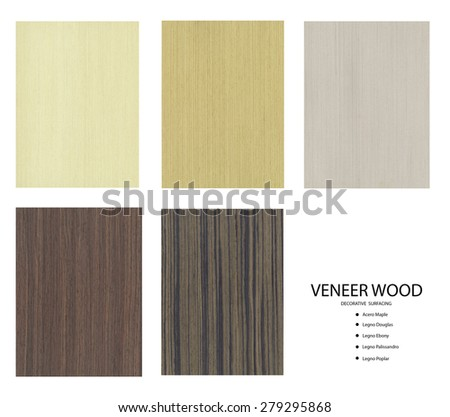 Set of Veneer Wood Decorative Surfacing on white background, Background for Interior Design, furniture surfacing - stock photo