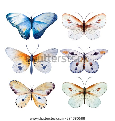 Set of watercolor butterfly. Vintage summer isolated  spring art. Watercolour  illustration. design   wedding card, insect, flower beauty banner.  Unusual popular decoration. - stock photo