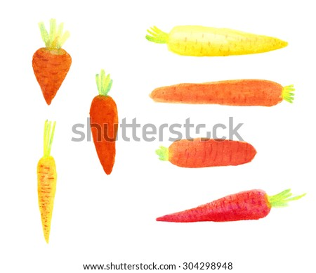 Set of watercolor carrots drawing