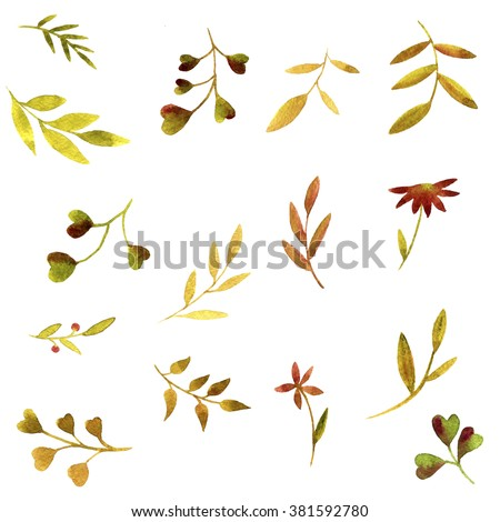 set of watercolor green branches and leaves, hand drawn vector design elements - stock photo