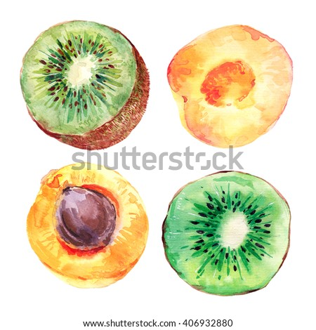 Set of watercolor kiwi fruit and apricots, botanical fruits collection, isolated illustration - stock photo