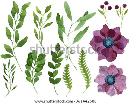 Set of watercolor leaves, purple anemone flowers, berries and branches. Design elements for patterns, wreath, laurels and compositions, greeting cards, wedding invitations. Real watercolor painting. - stock photo