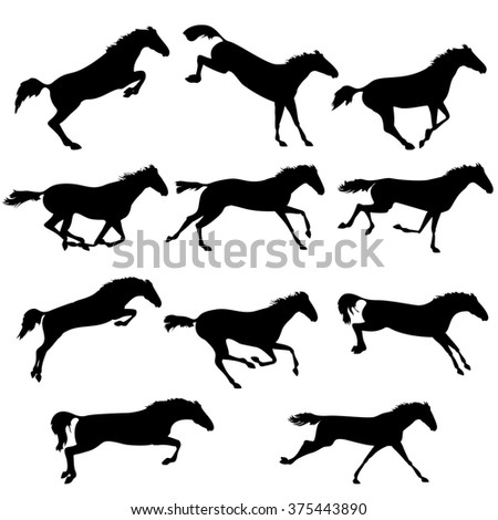 Set of wild horses.  horse collection. Silhouettes of horses. Collection of horse race, jump, run. Black and white  illustration with eleven horses - stock photo