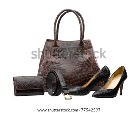 Set of women accessories which made of crocodile leather - stock photo