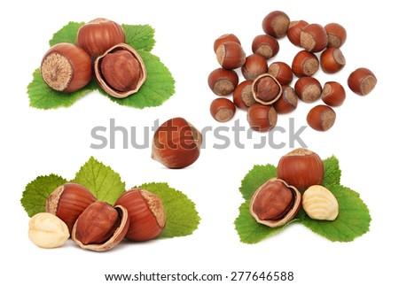 Set ripe hazelnuts isolated on white background - stock photo
