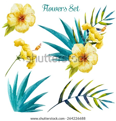 set, watercolor, flowers, tropical, exotic, hibiscus, palm - stock photo