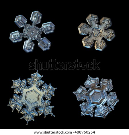 Set with four snowflakes, isolated on black background. This is macro photo of real snow crystals: medium size stellar dendrites with short arms.
