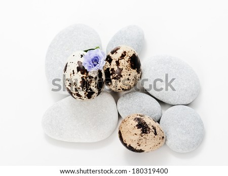 Set with sea stones and quail eggs  - stock photo