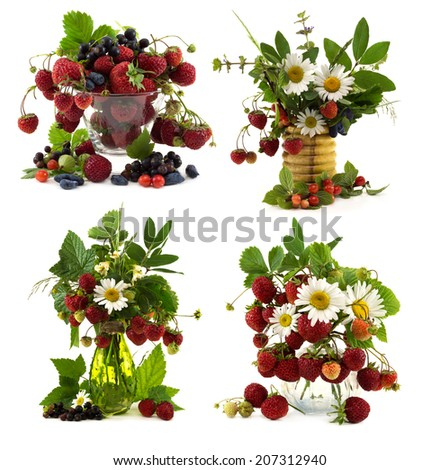Set with summer flowers and berries isolated on white - stock photo