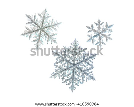 Set with three snowflakes, isolated on white background. These macro photos of real snow crystals was captured on glass surface with LED back light.