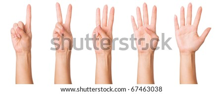 Set - woman hands making signs. Isolated on white background.