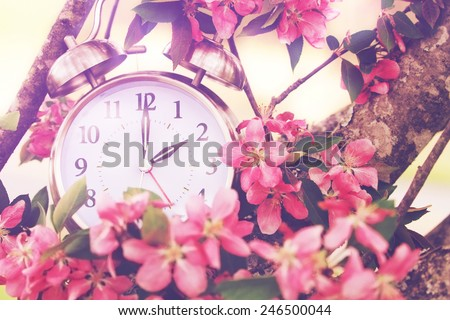 Set your clocks back in spring with this whimsical image of a clock surrounded by spring flowers set to 2 o clock! Extreme shallow depth of field with selective focus on clock. - stock photo
