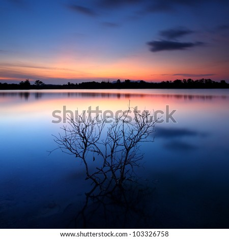 Settler in lake  at sunset, Thailand - stock photo