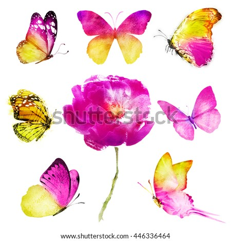 Seven pink yellow butterflies with flower on white background. Watercolor - stock photo