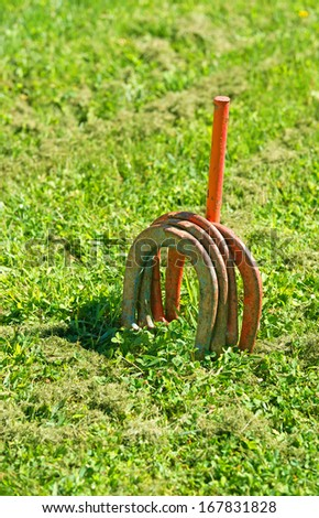 Several horse shoes with a metal pole on a green lawn. - stock photo