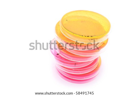 Several petri dishes for Microbiology research - stock photo