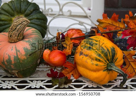 Several pumpkins in autumn setting - stock photo