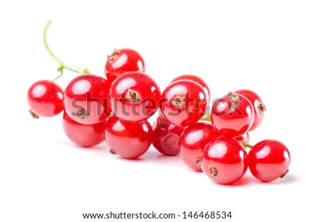 several red currants isolated before white background