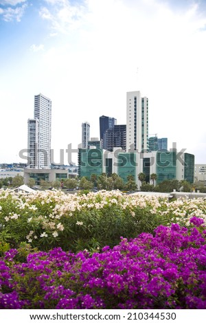 Several tall buildings and flowers in first place. Guadalajara, Jalisco, Mexico - stock photo