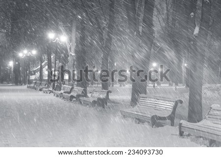 Severe weather in Kiev citizens favorite park, twilight hid fog and snowfall old trees, fall asleep benches lights shine through the mist, a strong wind blows snowflakes quickly through  the  branches - stock photo