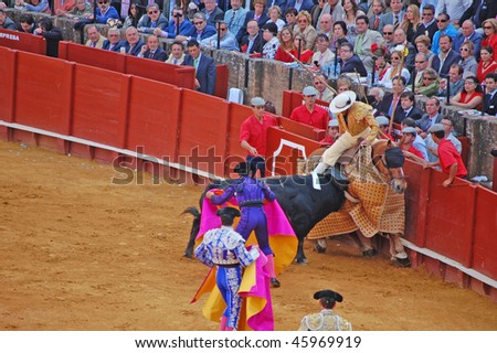 SEVILLE - APRIL 30: A bull attacks the picador during a bullfight at the Plaza de Toros de Sevilla April 30, 2009 in Seville, Spain.