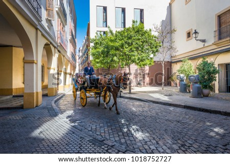 SEVILLE, ES - MARCH 9, 2017: Horse carriage, one of the most classic ways to sightsee around the city of Seville in Andalusia, Spain