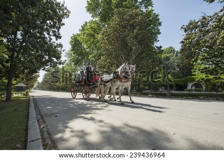 SEVILLE, SPAIN - MAY 7: Tourists riding on horse carriage walking in the Park of Maria Luisa on may 7, 2014 in Seville.  - stock photo