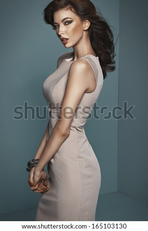 Sexy brunette - stock photo