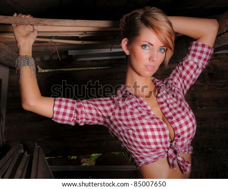 Sexy Farm Girl wearing a Plaid Shirt - stock photo
