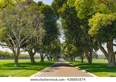 Shade covered street in the center of a green grass park in southern California. - stock photo