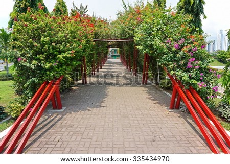 Shaded walkway under a pergola of bougainvillea in the Plaza Quinto Centenario, Panama City, Panama, Central America - stock photo