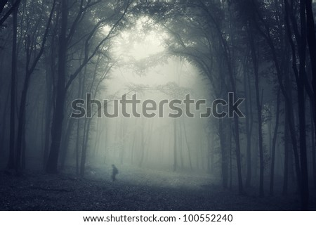 shadow moving in forest shadow - stock photo