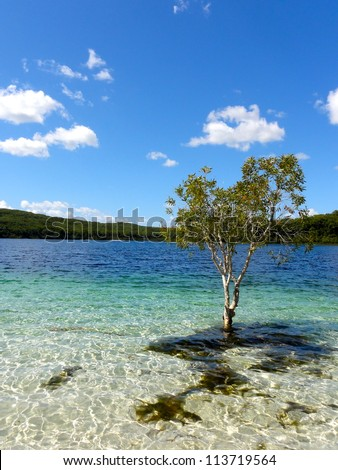 tobermory buddhist singles Tags: buddhism buddhist aug 10 - 23, 2018 (14 days) this two-week all-in retreat (optional third week included) is for families who want a good and open atmosphere (back) in their home.