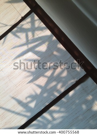 shadow of bamboo leaf on white background