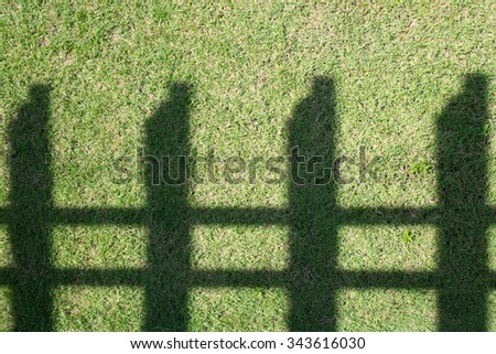 Shadow of fence on the grass.