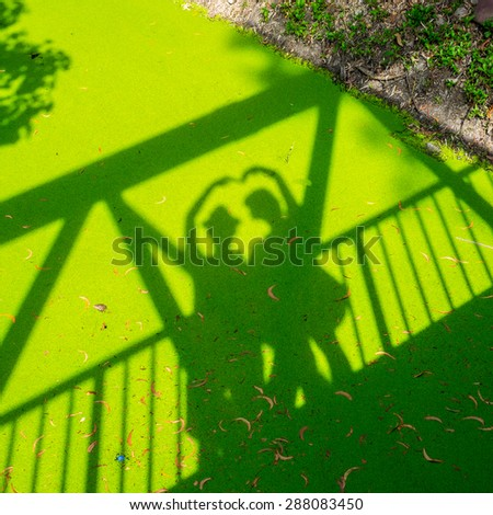 shadow of love on green duckweed floating in a canal - stock photo