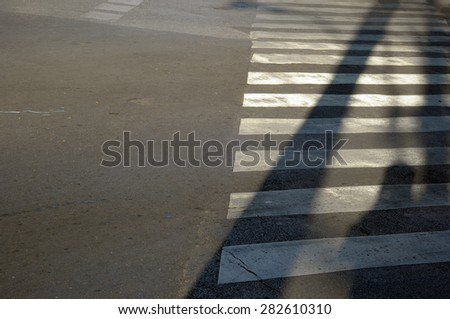 shadow of people on zebra sign - stock photo
