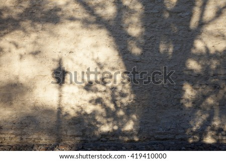 Shadow of tree and streetlamp on limestone wall in sunny afternoon - stock photo