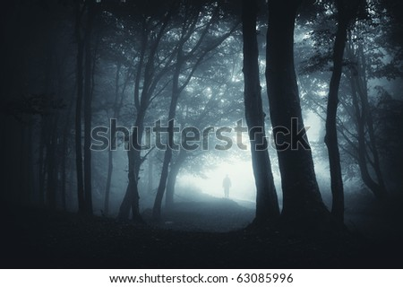 shadow sneaking in the forest - stock photo
