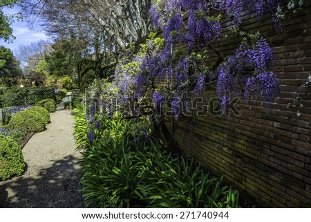 shadowed  pathway in a beautiful landscape English garden at sunrise - stock photo
