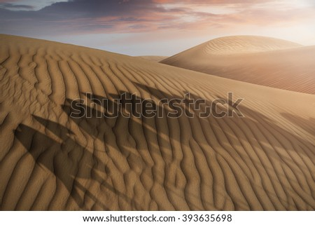 shadows of a camel caravan on desert sand dunes in the evening - stock photo