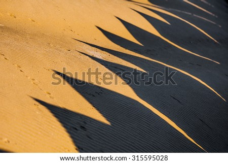 Shadows of Beach cabin. Winter. The famous Lido Beach in Venice, Italy.  - stock photo